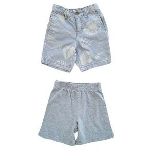 4/$30 Lot of 2 Pairs of Boys Shorts Size 2T